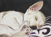 Mammal Pastels Metal Prints - Hanks Sleeping Metal Print by Jeanne Fischer