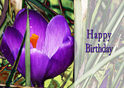 Message Art Art - Happy Birthday  by Belinda Greb