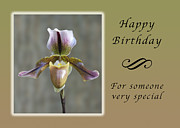 Michael Peychich - Happy Birthday for Someone Special