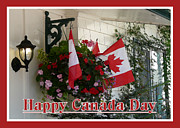 Avis  Noelle - Happy Canada Day Floral