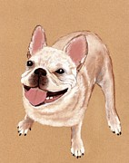 Anastasiya Malakhova - Happy Dog