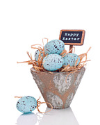 Happy Easter Prints - Happy Easter Print by Christopher and Amanda Elwell