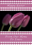 Michael Peychich - Happy Easter Purple Tulips
