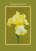Easter Flowers Framed Prints - Happy Easter Yellow Iris Framed Print by Michael Peychich
