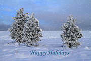 Canon 7d Prints - Happy Holidays Print by Donna Kennedy