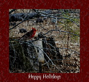 Bird On Tree Prints - Happy Holidays Print by Eva Thomas
