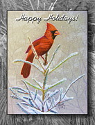 Evergreen Drawings Posters - Happy Holidays Poster by Marilyn Smith