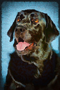 Black Lab Digital Art Metal Prints - Happy Lab Metal Print by Angel Pachkowski