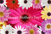 Kkphoto1 Posters - Happy Mothers Day Poster by Kay Novy
