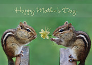 Chipmunks Framed Prints - Happy Mothers Day Framed Print by Lori Deiter