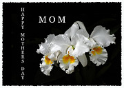 Randall Branham Acrylic Prints - Happy Mothers Day MOM Acrylic Print by Randall Branham