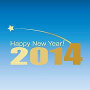 Marinela Feier - Happy New Year 2014