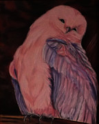 Owl Pastels Framed Prints - Happy Owl Framed Print by Karen Alber