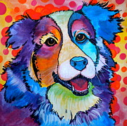 Pet Portraits Drawings Prints - Happy Scout Print by Debi Pople