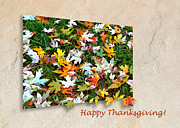 Mariola Szeliga - Happy Thanksgiving Card