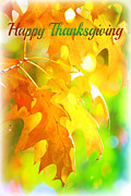 Fall Leaves Framed Prints - Happy Thanksgiving Framed Print by Elizabeth Budd