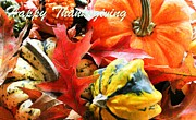 Judy Palkimas - Happy Thanksgiving