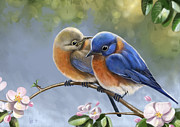 Bluebird Posters - Happy Together Poster by Arie Van der Wijst