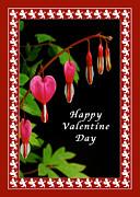 Michael Peychich - Happy Valentine Day