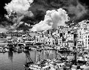 Dominic Piperata - Harbor and Fishing Boats