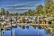 Santa Cruz Art - Harbor Boats by SC Heffner