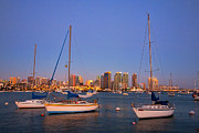 Skyline Art - Harbor Sailboats by Peter Tellone