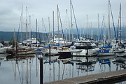 Boats In Harbor Prints - Harbor Scene Print by Susan Woodward