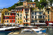 Northern Italy Framed Prints - Harbor Scenic in Portofino Framed Print by George Oze