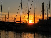 Joetta Palmer - Harbor Sunset in...