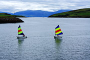 Sail Boats Prints - Harbour Sailing Print by Aidan Moran