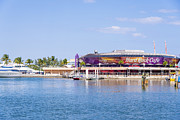 Hard Rock Cafe Building Prints - Hard Rock Cafe Port of Miami Print by Andre Babiak