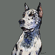 Danes Prints - Harlequin Great Dane Print by Dale Moses