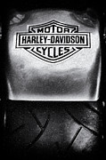 Tyre Art - Harley Davidson Abstract  by Tim Gainey