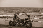 Galveston Metal Prints - Harley Davidson in Galveston TX  Metal Print by John McGraw
