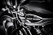 Monochrome Framed Prints - Harley Davidson Monochrome Framed Print by Tim Gainey