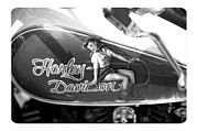 Concepts  Originals - Harley Davidson Pin Up by Stefano Senise