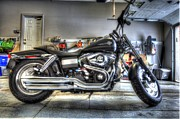 Harley Davidson Photo Originals - Harley Davidson by Rob Andrus