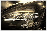 Engine Photo Originals - Harley Davidson Sportster 883 by Stefano Senise