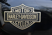 Lawrence Christopher Metal Prints - Harley Davidson Sportster Tank Emblem 1980 Metal Print by Lawrence Christopher