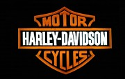 Harley Davidson Photo Originals - Harley-Davidson by Steven Parker