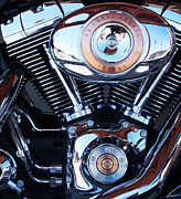 Harley Davidson Photos - Harley Fat Boy by Terril Heilman