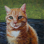 Cat Pastels - Harley of the Katy Trail by Lorraine McFarland