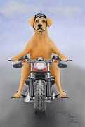 Dog Cards Prints - Harley the biker labrador dog  Print by Marlene Watson