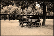 Harpers Ferry Posters - Harpers Ferry Wagon Poster by Bill Cannon