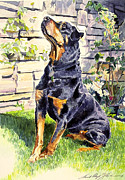 Best Sellers Painting Prints - Harry The Doberman Print by David Lloyd Glover