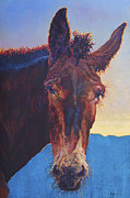 Donkey Paintings - Harvard by Patricia A Griffin