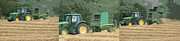 Bales Digital Art Posters - Harvest 1 Poster by Carol Lynch