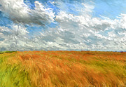 Harvest Art Digital Art Framed Prints - Harvest Landscape Framed Print by Yury Malkov