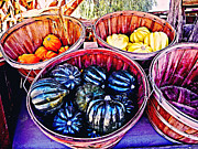 Farm Stand Art - Harvest by Lisa McKinney