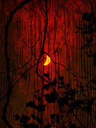 Blood Moon Posters - Harvest Moon Poster by Robert Ball